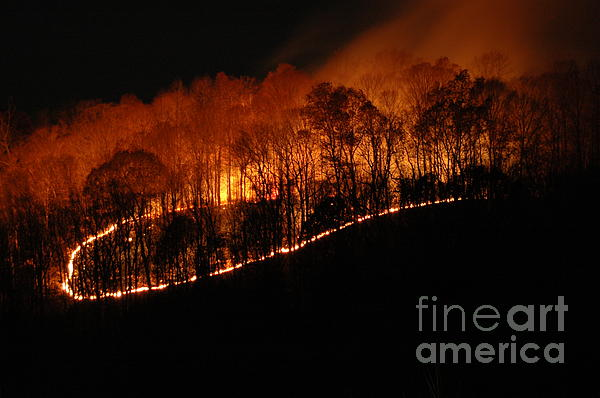 Brush Fire Photograph - Fire On The Mountain by Steven Townsend