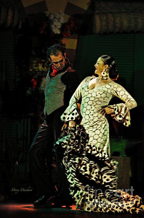 Flamenco Photograph - Flamenco Series No 11 by Mary Machare