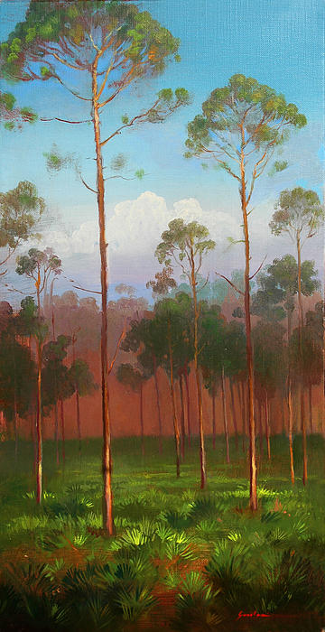 Florida Painting - Florida Pines by Keith Gunderson