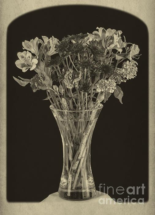Flowers Photograph - Flowers 1860s by Edward Fielding