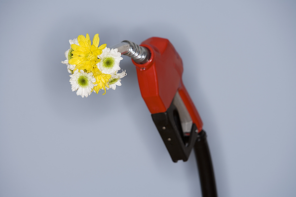 Flowers And Gas Pump Photograph by Comstock Images