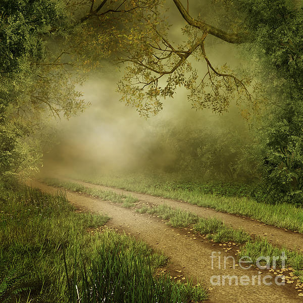 Foggy Road Photo Photograph - Foggy Road Photo by Boon Mee