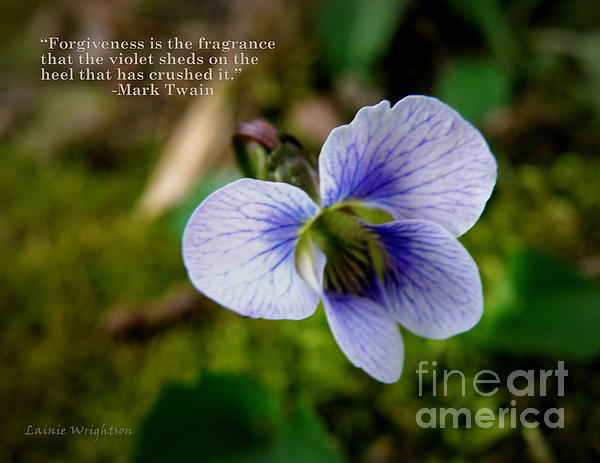 Violet Photograph - Forgiveness by Lainie Wrightson