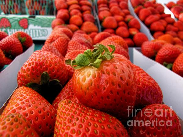 Fruit Photograph - Fresh Strawberries by Peggy Hughes