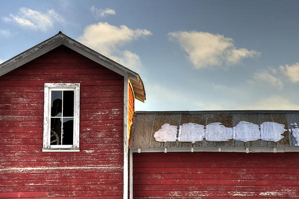 13493 Photograph - Ft Collins Barn 13493 by Jerry Sodorff