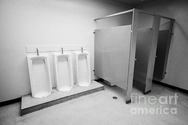 Toilet Photograph - full length urinals and cubicles in mens toilet of High school canada north america by Joe Fox