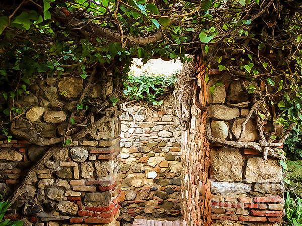 Garden Photograph - Garden Walls by Lutz Baar