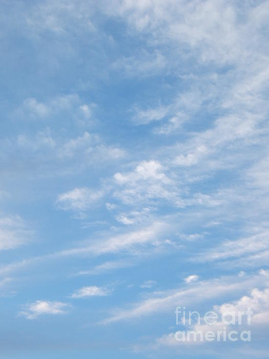 Clouds Photograph - Gathering Together by Margaret McDermott