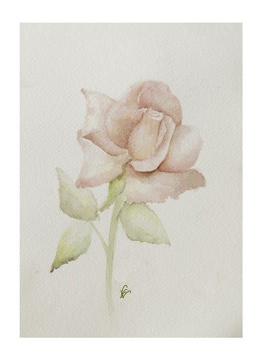 Flower Painting - Gentle Grace by Nancy Edwards