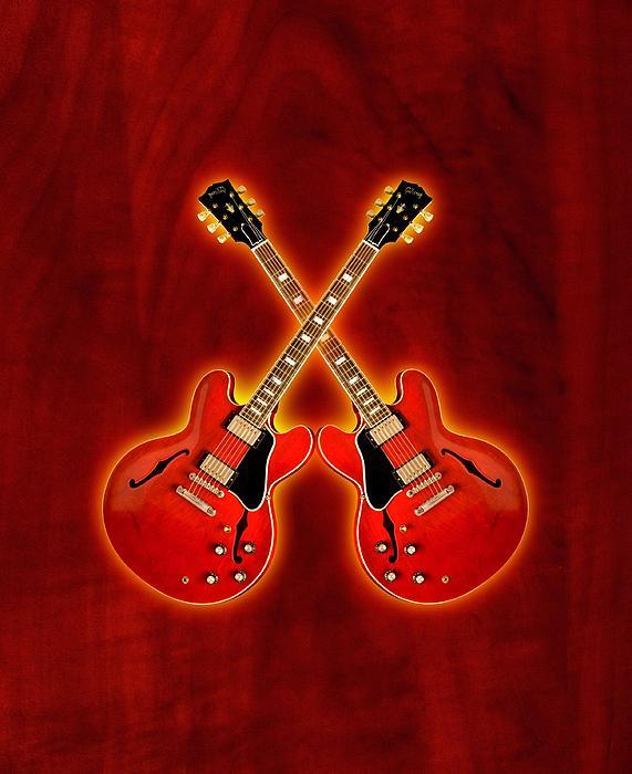 Gibson Digital Art - Gibson Es 335 by Doron Mafdoos