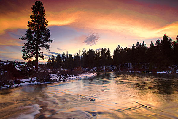 Colors Photograph - Golden Sunset by Engin Tokaj