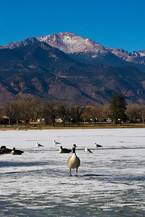 Landscape Photograph - Goose At The Peak by Matt Radcliffe