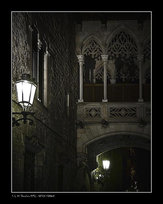Animals Photograph - Gothic Shadows by Pedro L Gili
