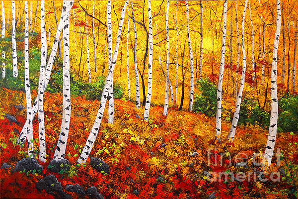 Autumn Painting - Graceful Birch Trees by Connie Tom