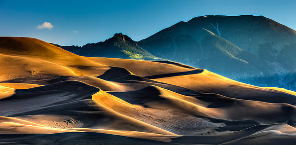 Sand Photograph - Great Sand Dunes At Dawn by David Wynia