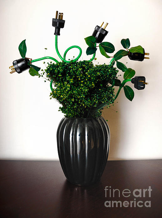 Alternative Energy Photograph - Green Energy Floral Arrangement Of Electrical Plugs by Amy Cicconi