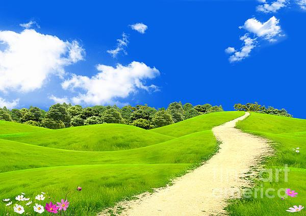 Green Field Photograph - Green Field by Boon Mee