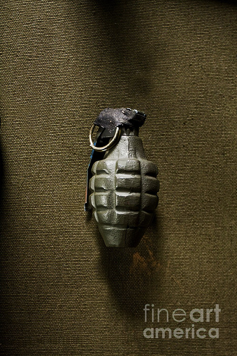 Grenade Photograph by Margie Hurwich