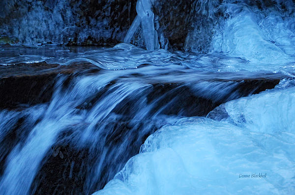 Ice Photograph - Half Frozen by Donna Blackhall
