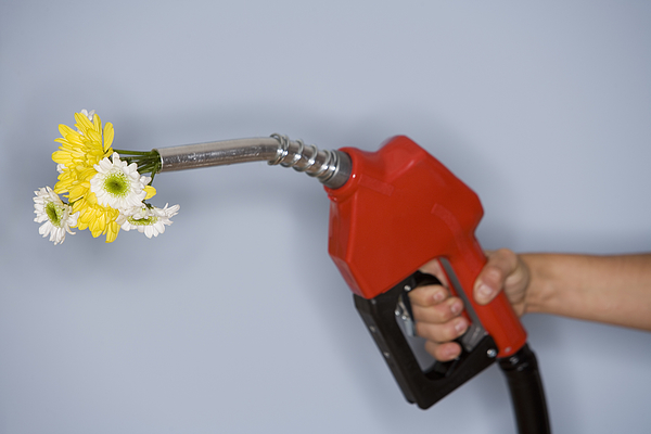 Hand Holding Gas Pump Filled With Flowers Photograph by Comstock Images