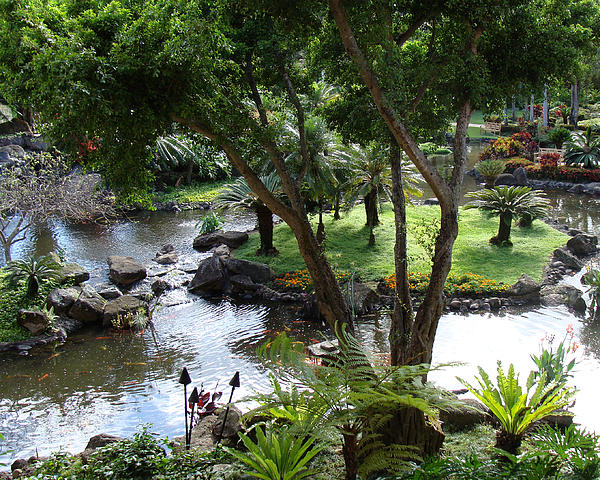 Landscape Photograph - Hawaiian Pond  by Dee  Savage
