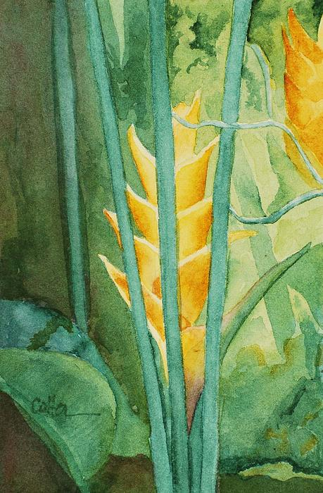 Heliconia Painting - Heliconia by Diane Cutter