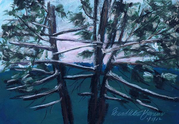 Pastel Painting - Hemlocks Snowy Morning by Bernadette Kazmarski