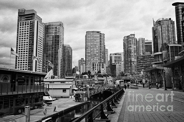 High-rise Photograph - high rise apartment condo blocks in the west end coal harbour marina Vancouver BC Canada by Joe Fox
