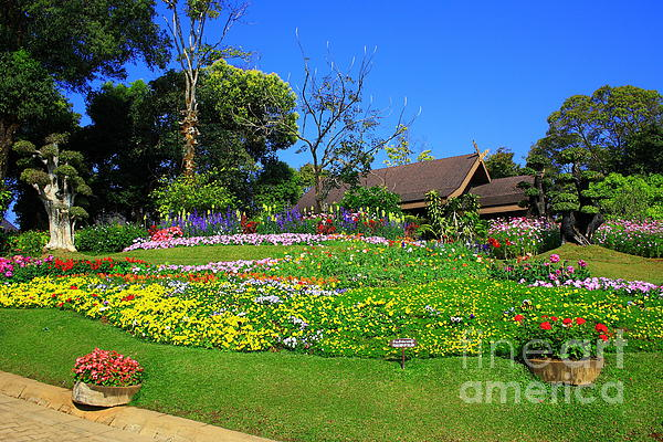 Home Photograph - Home Gardening Zones by Boon Mee