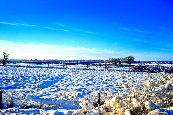 Snow Photograph - Horizon by Dave Woodbridge