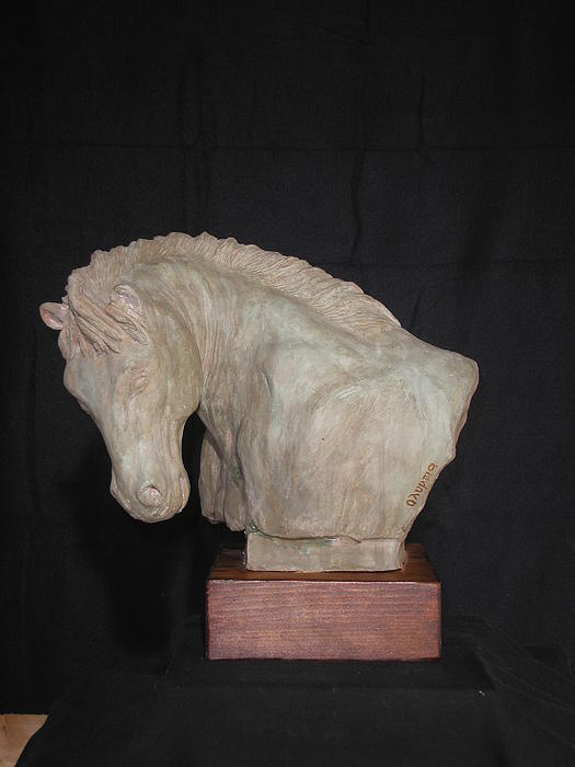 Sculpture Sculpture Horse Sculpture Animals Sculpture Busts Sculpture Close Up Sculpture Clay Sculpture Sculpture Wildlife Sculpture Realistic Sculpture Head Sculpture Face   Sculpture - Horse by Olympia Letsiou