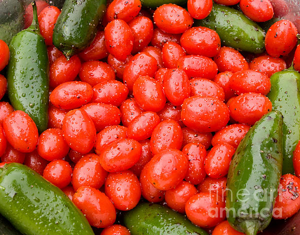 Agriculture Photograph - Hot Peppers And Cherry Tomatoes by James BO  Insogna
