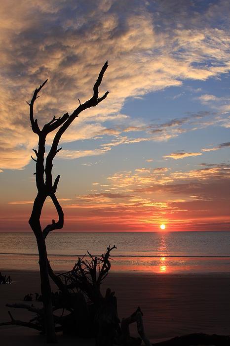 South Carolina Coast Photograph - Hunting Island Sunrise by Mountains to the Sea Photo