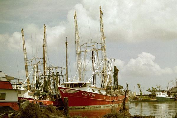 Hurricane Katrina Aftermath Photograph by Belinda Lee