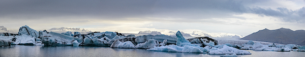 Icebergs Floating  In The Jokulsalon Glacier Lagoon In Iceland Photograph by Sjo