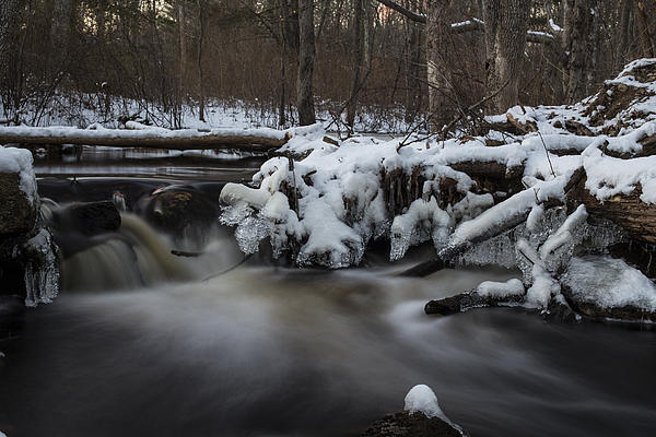 Brook Photograph - Icy Waters by Andrew Pacheco