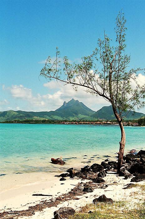 Mauritius Photograph - Ile Aux Cerfs Mauritius by David Gardener