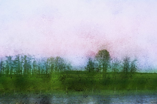 Water Photograph - Impressionistic Style Of Trees by Roberta Murray