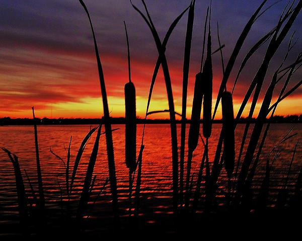 Indiana Photograph - Indiana Sunset by Benjamin Yeager