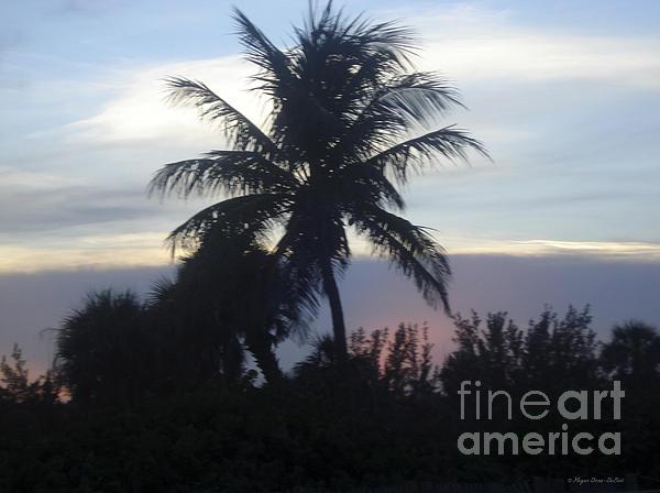 Beach_photography Photograph - Island Sunset by Megan Dirsa-DuBois