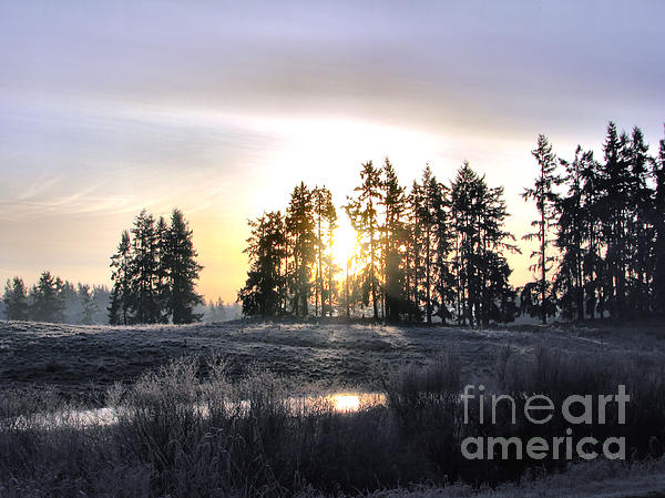 Landscape Photograph - January Morning by Rory Sagner