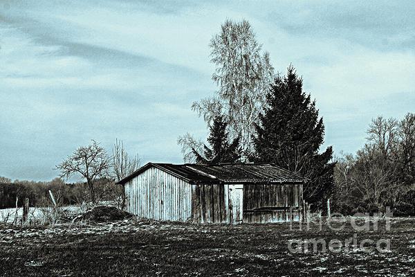 Photo Photograph - January Sadness by Jutta Maria Pusl