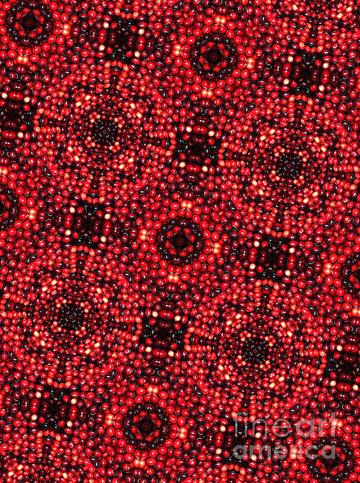 A Lot Digital Art - Kaleidoscope Cranberries by Amy Cicconi