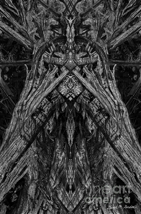 Archetype Photograph - King Of The Wood by David Gordon