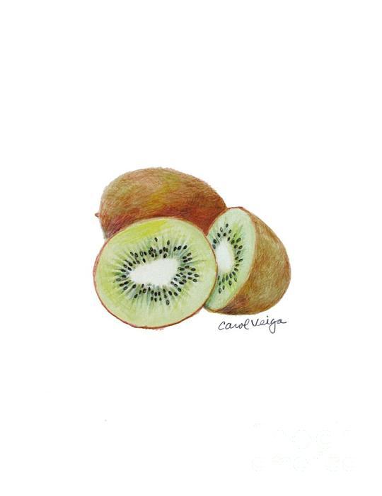 Kiwi Drawing - Kiwi by Carol Veiga