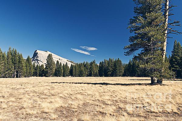 Yosemite Photograph - Lambert Dome In Yosemite National Park by Justin Paget