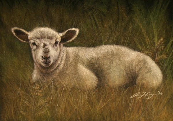 Lamb Painting - Lazy Lamb by Rachael Curry