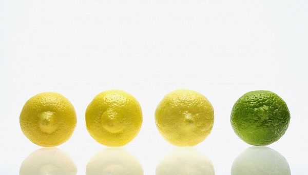 Comparability Photograph - Lemons And Lime by Kelly Redinger