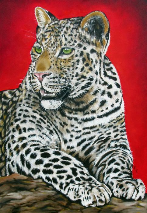 Leopard Painting - Leopard by Ilse Kleyn