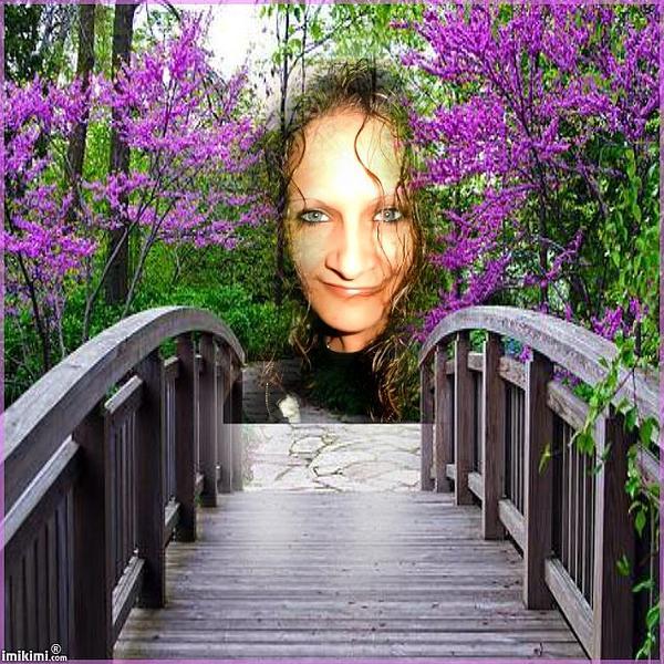 Lilac Garden Photograph by Annette Abbott